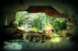 jungle-urbaine-720px
